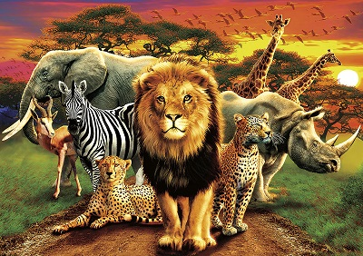 Amazing Nature: African Beasts Puzzle (500 Pieces)