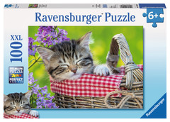 Sleeping Kitten Puzzle: 10539