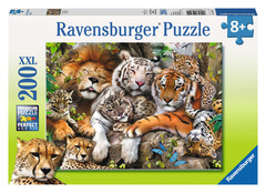 Big Cat Nap Puzzle: 12721