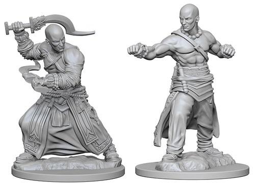 Pathfinder Deep Cuts Unpainted Minis: Human Male Monk
