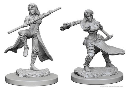 Dungeons and Dragons Nolzurs Marvelous Unpainted Minis: Human Female Monk