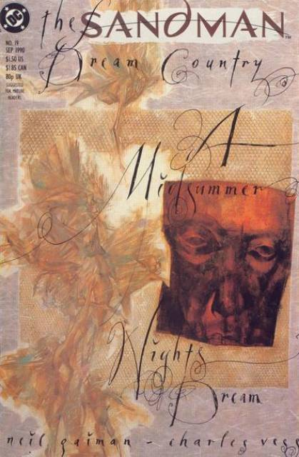 The Sandman (1989) no. 19 - Used