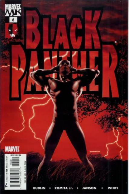 Black Panther (2005) no. 6 - Used