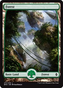Forest - Battle for Zendikar (Full Art)