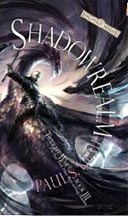 Forgotten Realms: Shadowrealm: The Twilight War - Used