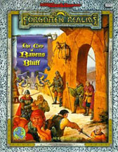 Dungeons and Dragons 2nd ed: Forgotten Realms: The City of Ravens Bluff - Used