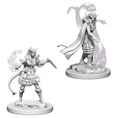 Dungeons and Dragons Nolzurs Marvelous Unpainted Minis: Tiefling Female Sorcerer