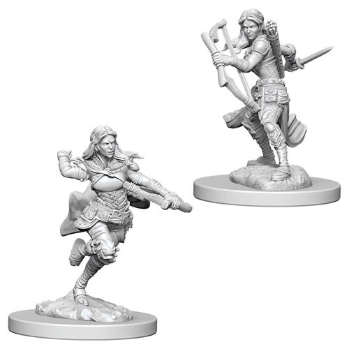Dungeons and Dragons Nolzurs Marvelous Unpainted Minis: Air Genasi Female Rogue