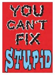 Jumbo Magnet: You Can't Fix Stupid