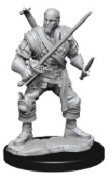 Dungeons and Dragons: Nolzur's Marvelous Unpainted Miniatures Wave 15: Human Bard Male