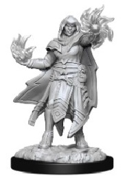 Dungeons and Dragons: Nolzur's Marvelous Unpainted Miniatures Wave 15: Hobgoblin Fighter Male and Hobgoblin Wizard Female