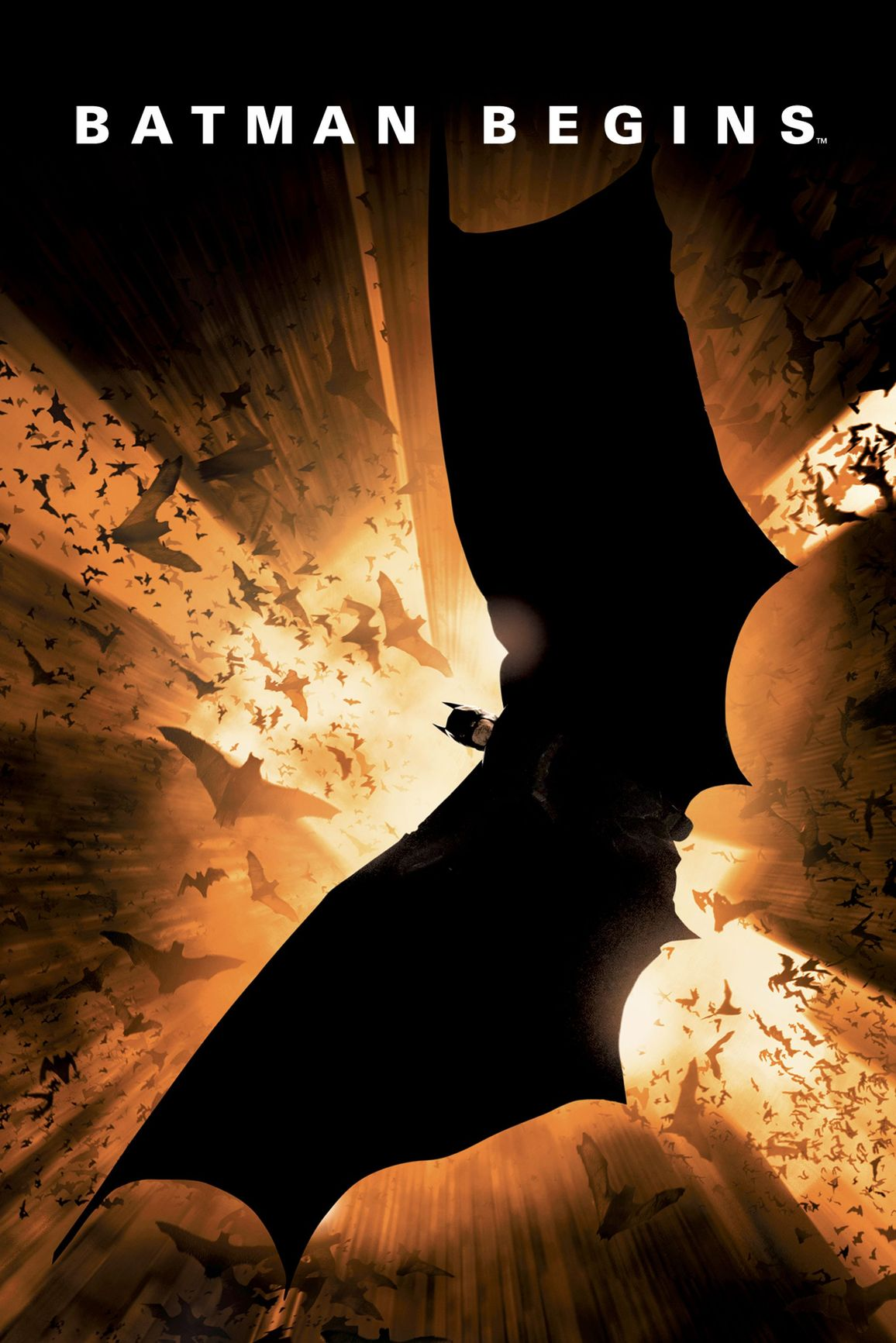 Batman Begins Official Movie Adaptation GN - Used