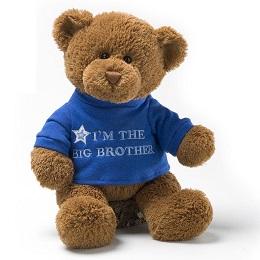 Plushie: Big Brother Bear