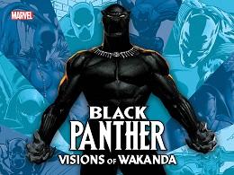 Black Panther: Visions of Wakanda HC