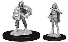 Dungeons and Dragons Nolzurs Marvelous Unpainted Minis Wave 13: Darkling Elder and Darklings