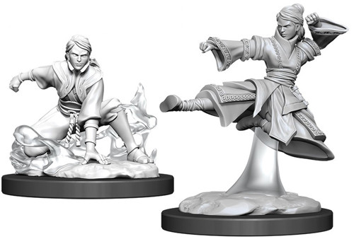 Dungeons and Dragons: Nolzur's Marvelous Unpainted Miniatures Wave 11: Female Human Monk