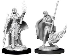 Pathfinder Battles Deep Cuts Unpainted Miniatures Wave 11: Female Human Oracle