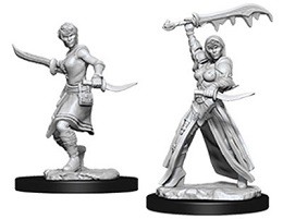 Dungeons and Dragons: Nolzur's Marvelous Unpainted Miniatures: Female Human Rogue