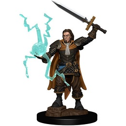 Pathfinder Battles: Premium Painted Figure: Wave 1 Human Cleric Male