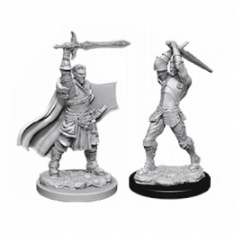 Dungeons and Dragons: Nolzur's Marvelous Unpainted Miniatures Wave 12: Male Human Paladin