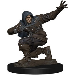 Pathfinder Battles: Premium Painted Figure: Wave 1 Human Rogue Male