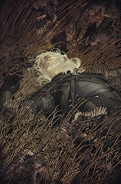 Witcher: Fading Memories no. 2 (2020 Series)