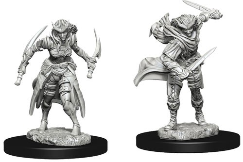 Dungeons and Dragons Nolzurs Marvelous Unpainted Minis: Tiefling Female Rogue