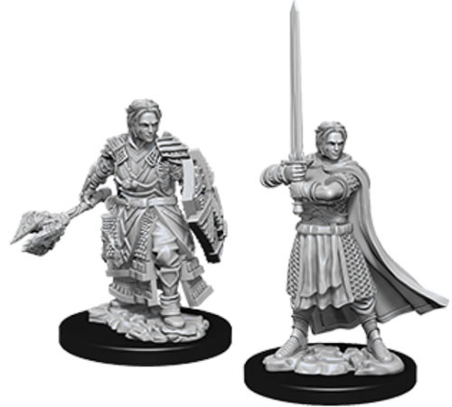 Dungeons and Dragons: Nolzur's Marvelous Unpainted Miniatures: Male Human Cleric